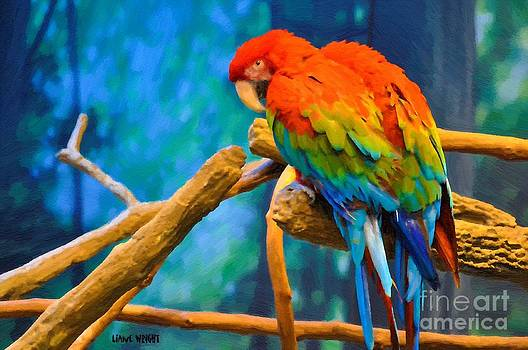 Liane Wright - Bold Parrot