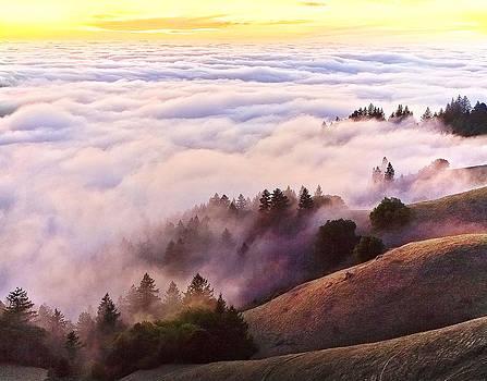 Bolinas Ridge 3 by Michael Fahey