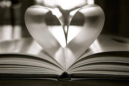 Book of Love by Jennifer Lamanca Kaufman