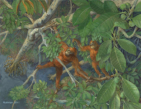 Bornean Orangutan by ACE Coinage painting by Michael Rothman