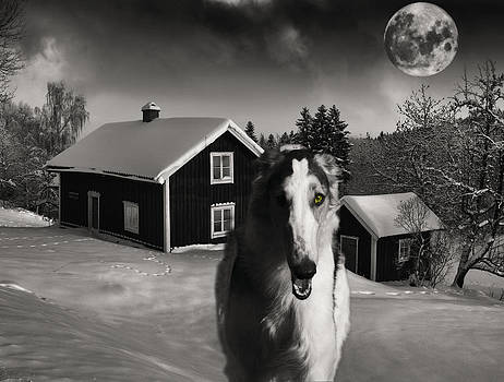 Borzoi wolf hound on a midnight hunt by Christian Lagereek