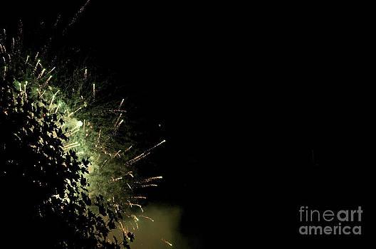 Bosje Vuur by Danny Motshagen