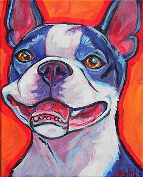 Boston Terrier Smile by Jenn Cunningham