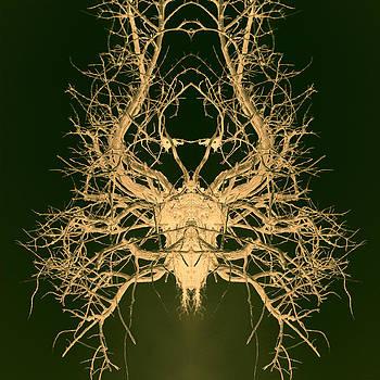 Botanic trophy by Anders Hingel