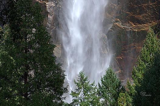 Bottom of the Falls by Lynn Bawden