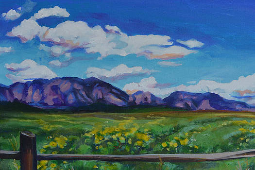 Boulder from Afar by Renee Peterson