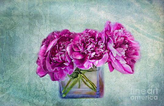 Andrea Kollo - Bouquet of Beauty