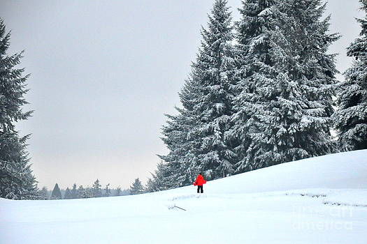 Boy in the Red Coat Walking on a Snowy Golf Course by Tanya  Searcy