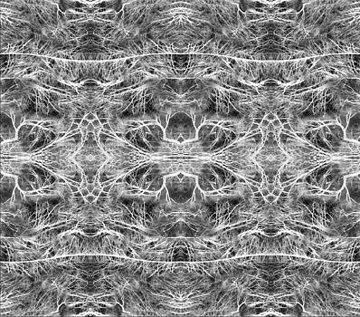 Branches Pattern by Florin Birjoveanu