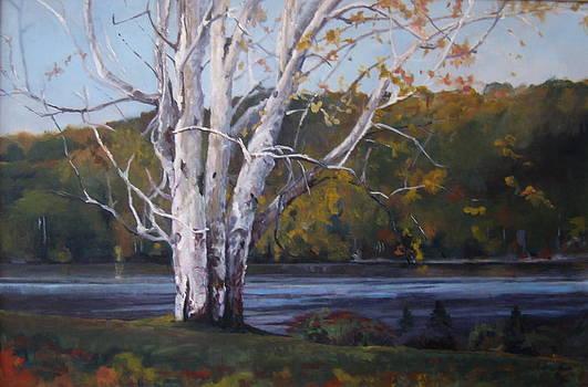 Brant Lake by Terri Messinger