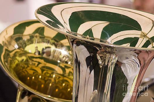 Brass Band by Cynthia Holling-Morris