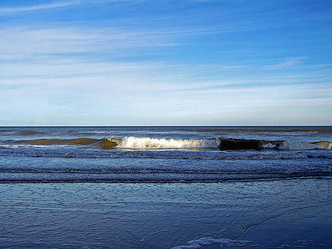 Patricia Taylor - Breaking at Low Tide