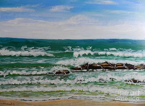 Breaking Waves by Pamela  Meredith