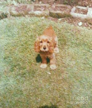 Brians dog by Julie Dunkley