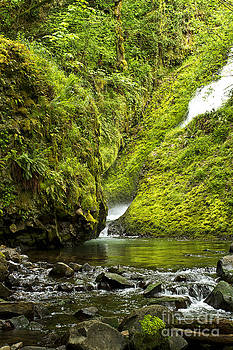 Bridal Veil Falls Oregon by Carrie Cranwill