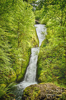 Bridal Veils Falls Oregon by Carrie Cranwill