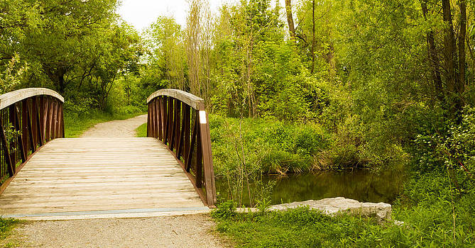 Bridge and path. by Tibor Co