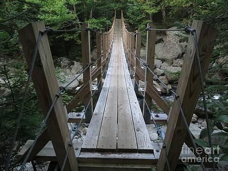 Jonathan Welch - Bridge