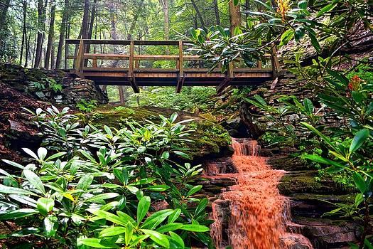 Bridge Over Rainbow Falls by L Granville Laird