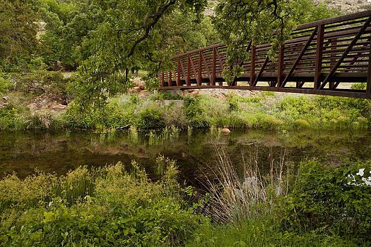 Bridge Over Wetlands by Katherine Worley