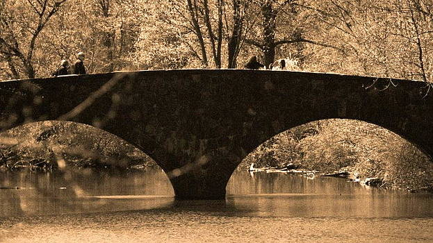 Bridge by Roseann Errigo