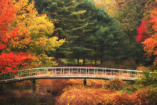 Bridge to Autumn by Karol Livote
