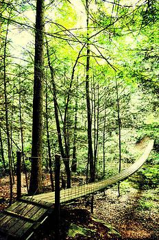 Bridge to Beauty by Heather Bridenstine