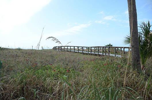 Bridge to Dreams by Julie Cameron