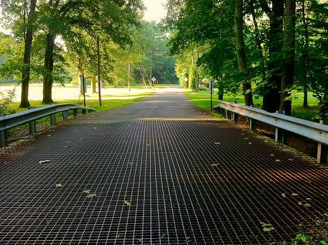 Bridge to Utopia by Tanya Renee Herb