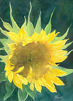 Bright Colorful Sunflower Watercolor by K Joann Russell