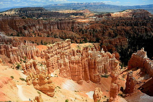 Brilliant Bryce by Carrie Putz