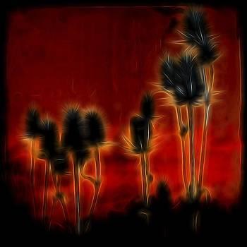 Gothicolors Donna Snyder - Brilliant Teasel