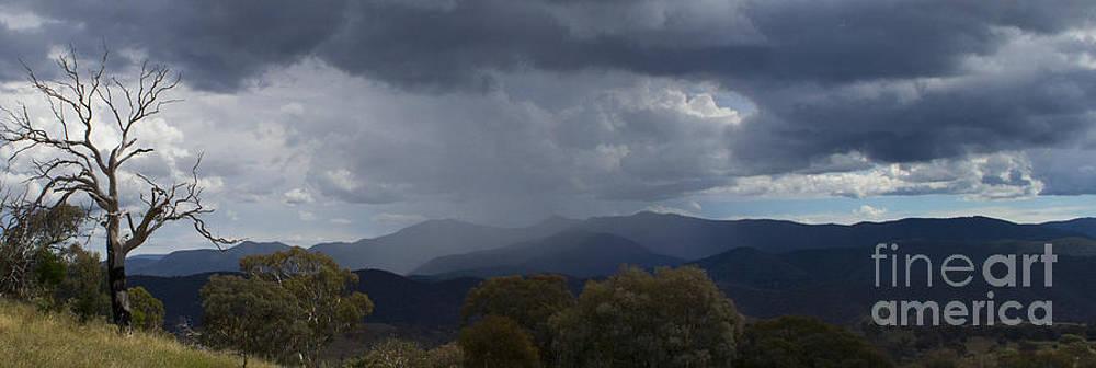 Brindabella Rain Fall by Angela DeFrias
