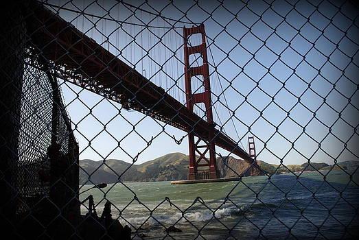 Broken Fence  by Virginia Cortland