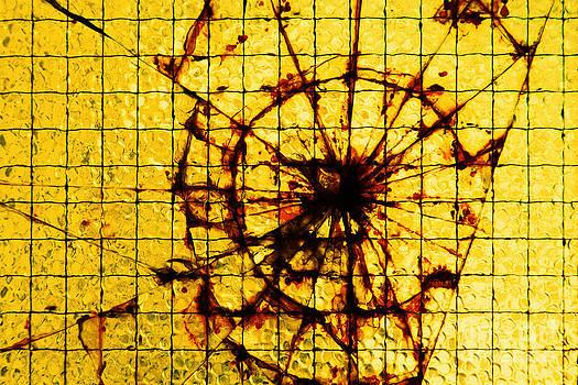 Gaspar Avila - Broken glass