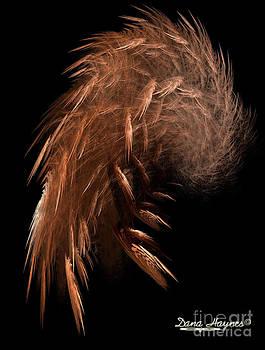 Dana Haynes - Broken Wing