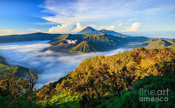 Bromo vocalno at sunrise East Java Indonesia by Noppakun Wiropart