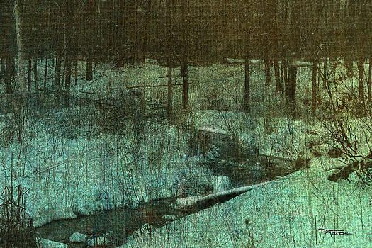 Brook In Snow by Zan Barrage