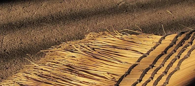 Broom - 1 by Bridget Johnson