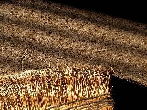 Broom - 3 by Bridget Johnson