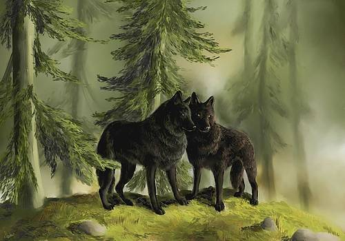 Brother Wolves by Cassandra Gallant