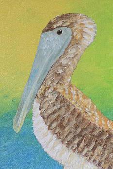 Brown Pelican by Lindy Brown