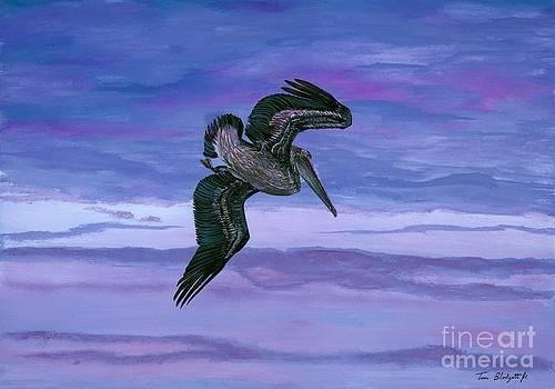 Brown Pelican by Tom Blodgett Jr