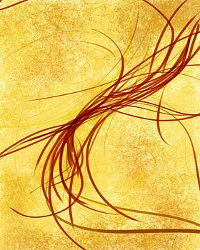 Brown Shrimp by Jean-Francois Bissonnette
