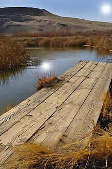 Bruneau Dunes Pond Idaho by David Marr