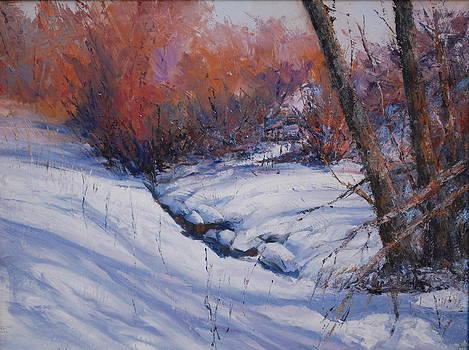 Brush ON Hay Creek by Gary Gore