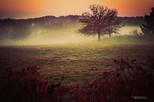 Brushstrokes of Autumn by Dustin Abbott