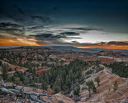 Bryce Canyon #110 by Phil Abrams