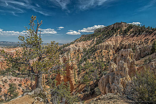Bryce Canyon Fairyland Point by Phil Abrams