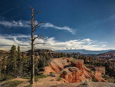 Jeff Burton - Bryce Canyon IV